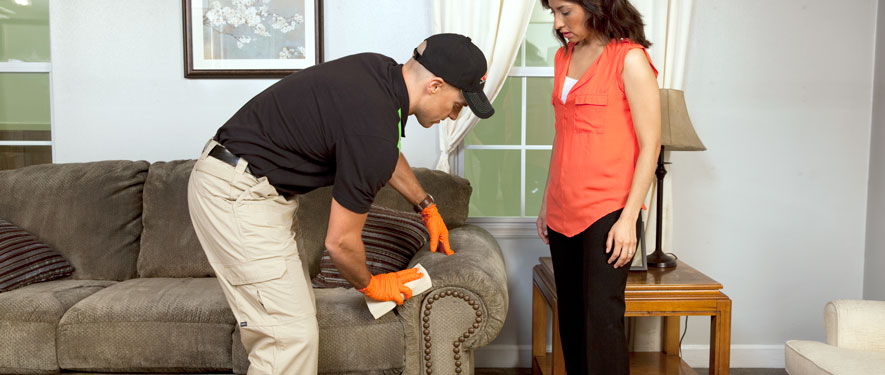 Easley, SC carpet upholstery cleaning